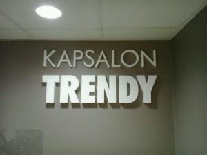 TrendyLogo
